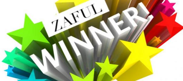 zaful-winner