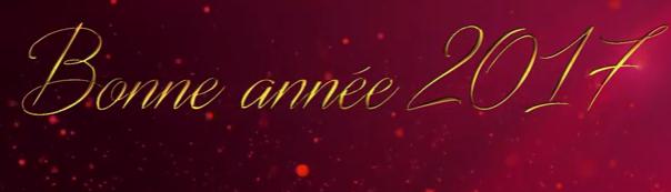 logo-bonne-annee