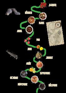 Montage chemin gula